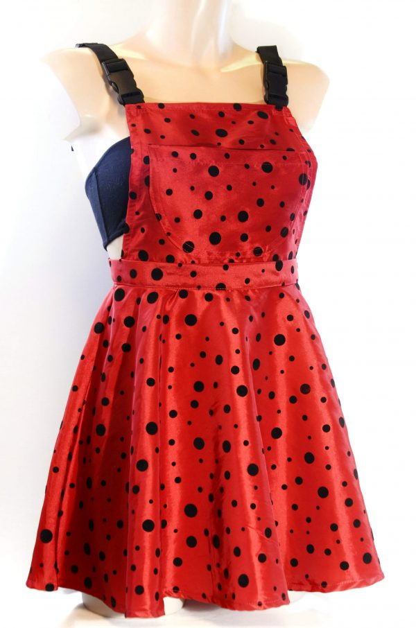 Techno-Pichi Ladybug
